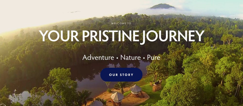 pristine rainforest tours hero image example