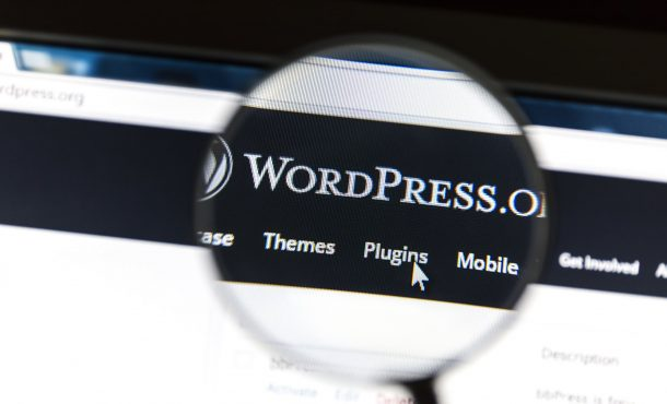 The Definitive Guide to Combining Shopify and WordPress
